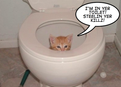 toiletcatgears